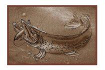 Delphin szőnyeg Retro CSUKA